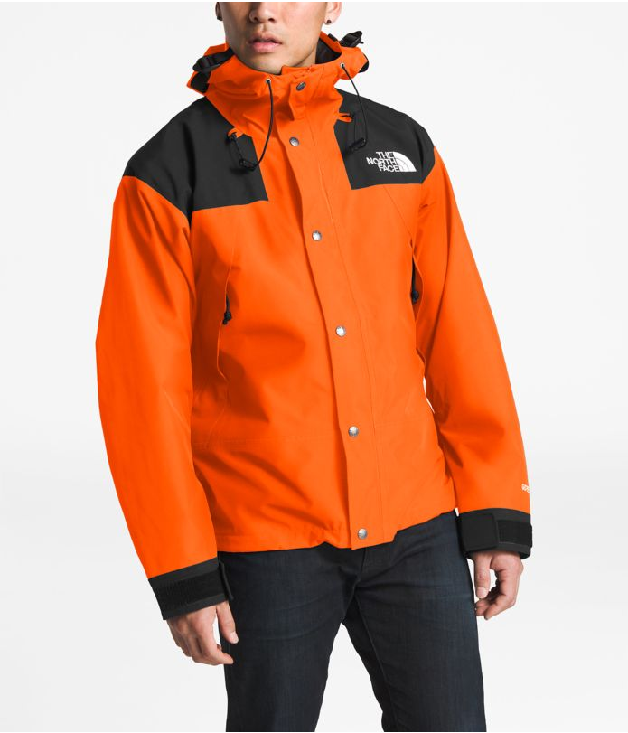 THE NORTH FACE 1990 MOUNTAIN GTX JACKET