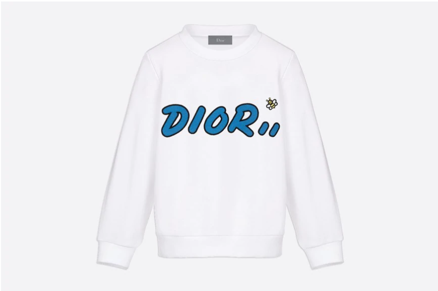 dior kaws sweat